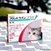猫フロントラインプラスCAT 6ピペット