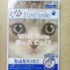 わんにゃんアートマスク 猫柄フェイスパック5枚入り コタロー♪
