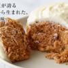チーズケーキのLeTAO【ルタオ】 期間限定・新作スイーツ 【 ガトー オ カロット】