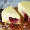 チーズケーキのLeTAO ルタオ  ☆新作スイーツ  【淡雪*ホワイト*】 口どけは春を待ちわびる大地に降る、淡くはかない雪☆