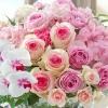 フラワーギフトの日比谷花壇 母の日ギフト特集2016  アレンジメント「花てまり」♪