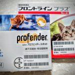 最安購入 年間投与が大切 フロントラインプラス猫用  猫用プロフェンダースポット